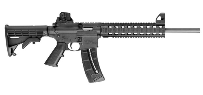 Smith & Wesson M&P15-22 .22 LR